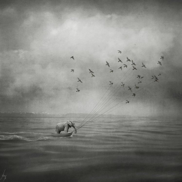 Making Waves - Image 0