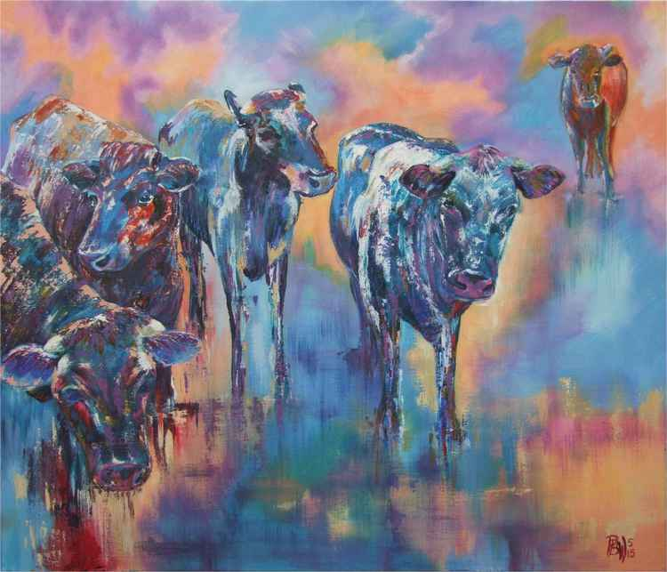 Welsh Limousin Cattle in Blue -