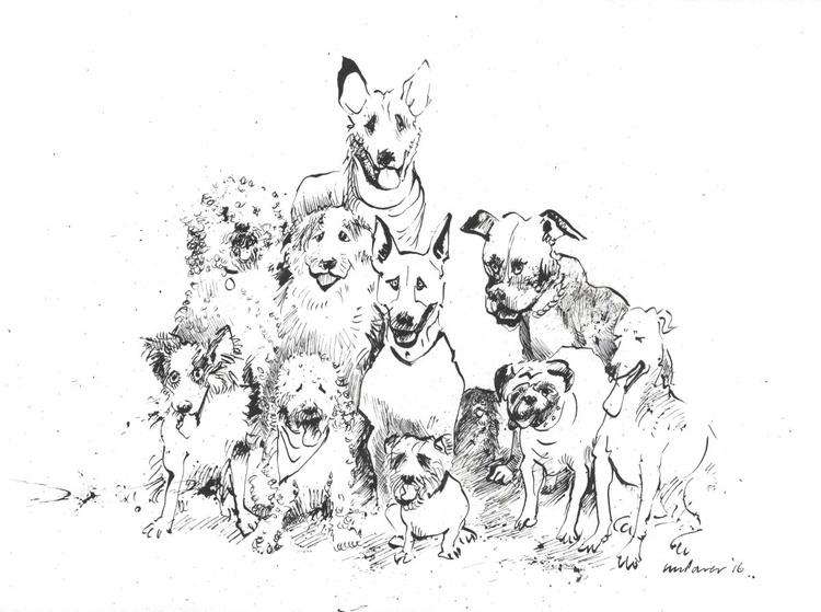 Dog mates - Class of 2016 - Image 0