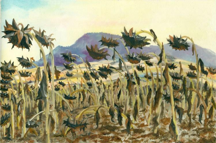 Autumn Sunflowers - Image 0