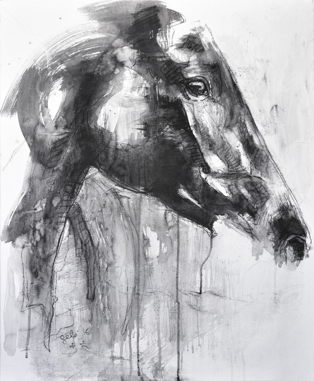 Equine Nude 35t - Image 0