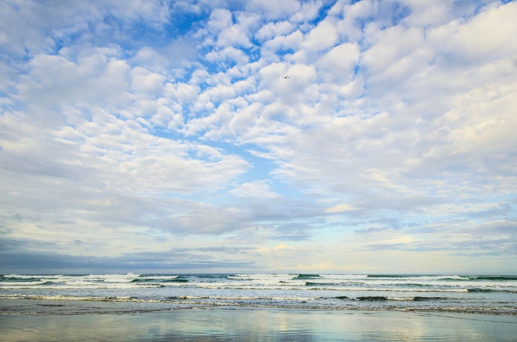 SEA AND SKY 1. - Image 0