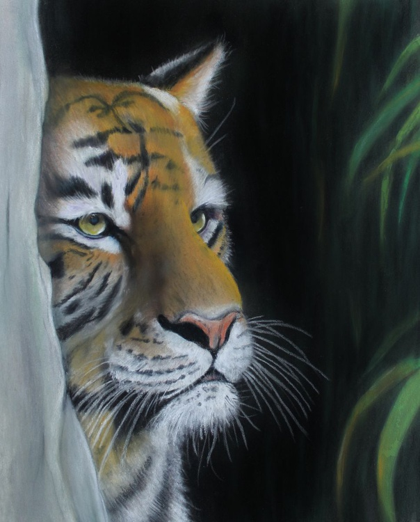 Watching You, framed pastel picture of a tiger - Image 0