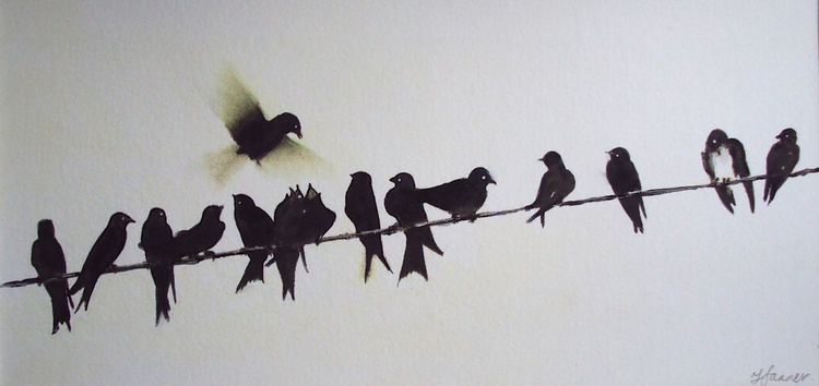 Swallows on a wire - Image 0