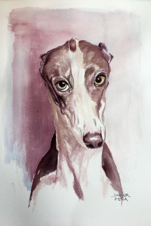 Hugo Greyhound Portrait III - Image 0