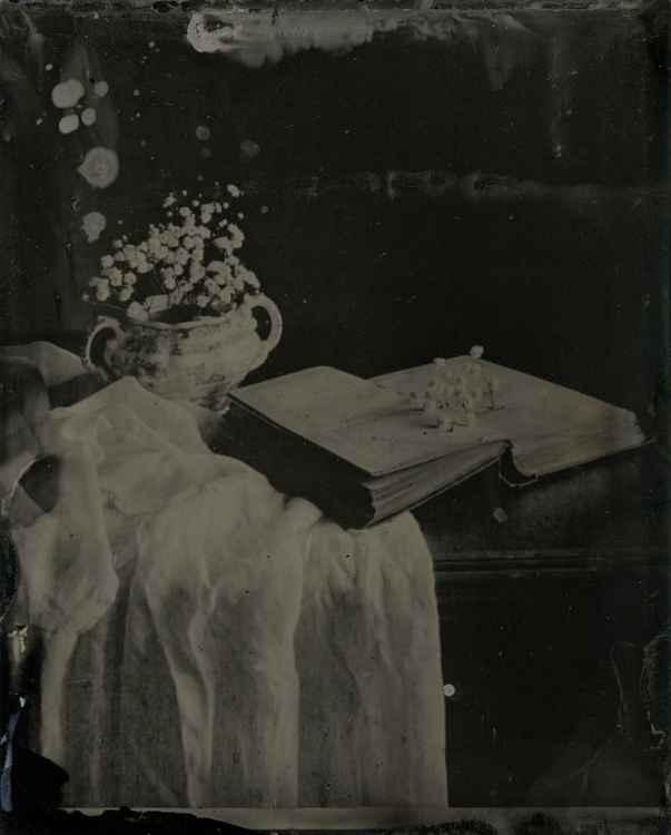 Book of Gyspyphilia -