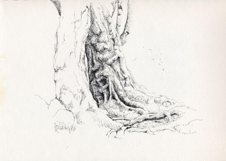 Tree #04 - Image 0