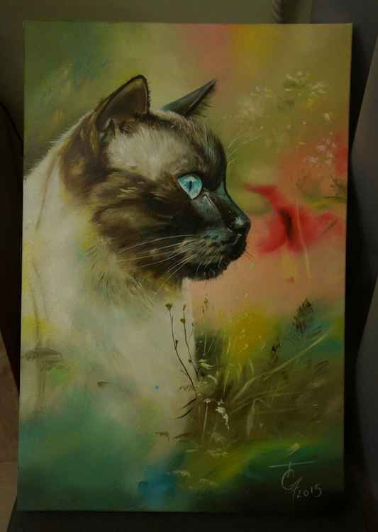 Cat, oil on canvas