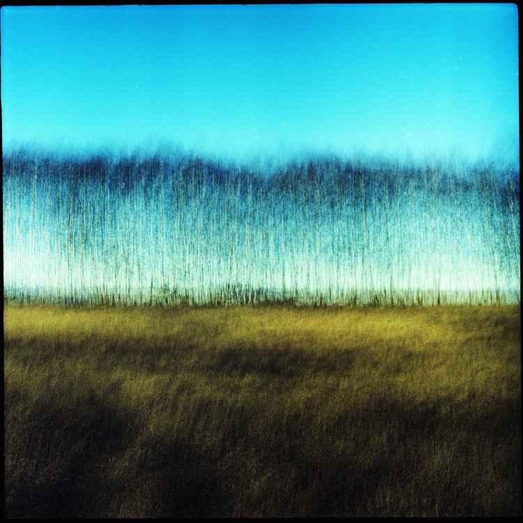 Landscape five -