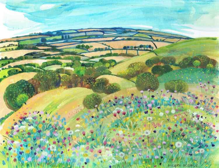 Wild Flowers on Wye Downs -