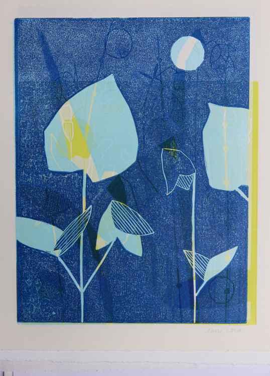 Blue Sweet Iris -