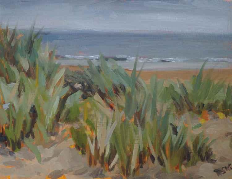 Rain at Curracloe Beach -