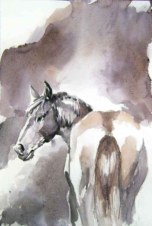 Horse steam II -