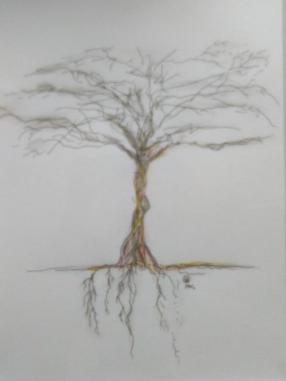 Root Tree - Image 0