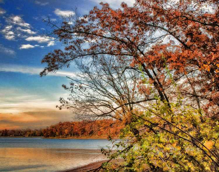 Shoreline in the golden glow of an autumn afternoon -