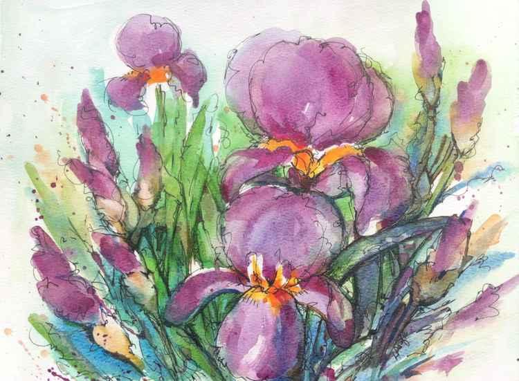 Iris Burst -