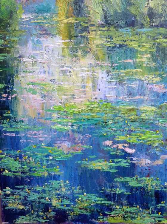 Waterlilies. Morning -