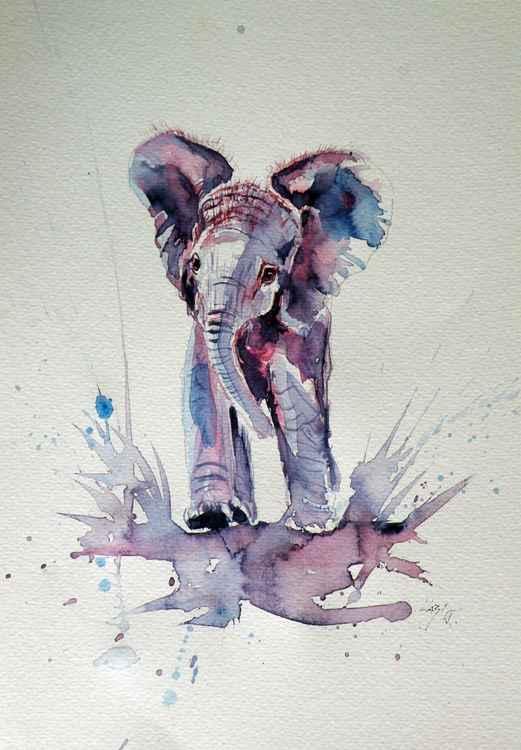 Elephant baby -