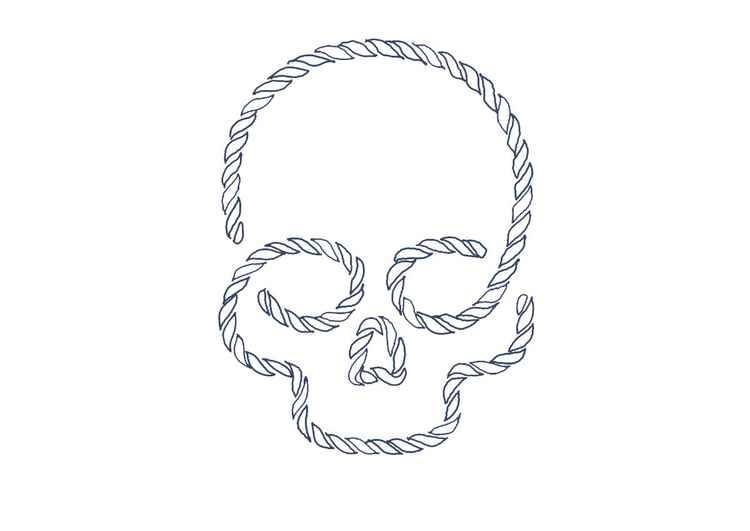 Skull 8 x 10 Drawing