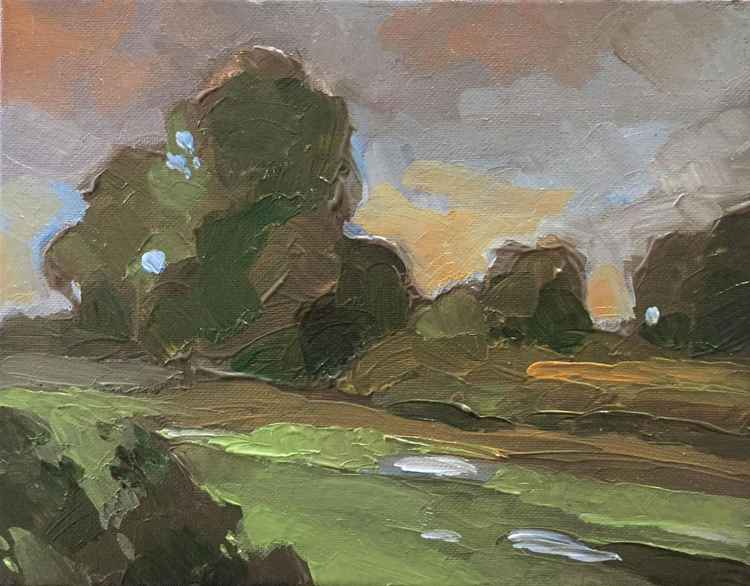 Wetland Series #2