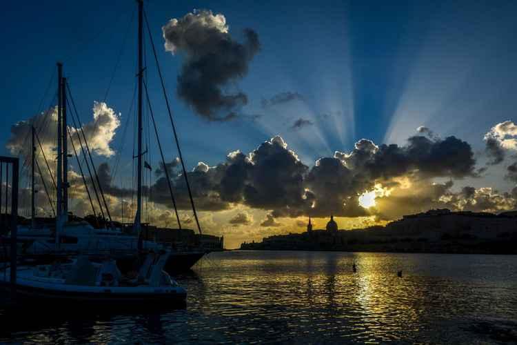 Morning Glory -