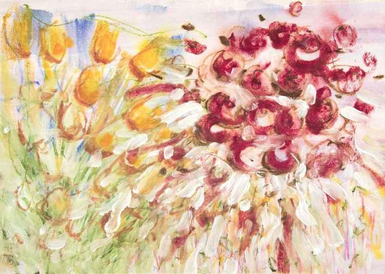 Crimson Anemone -