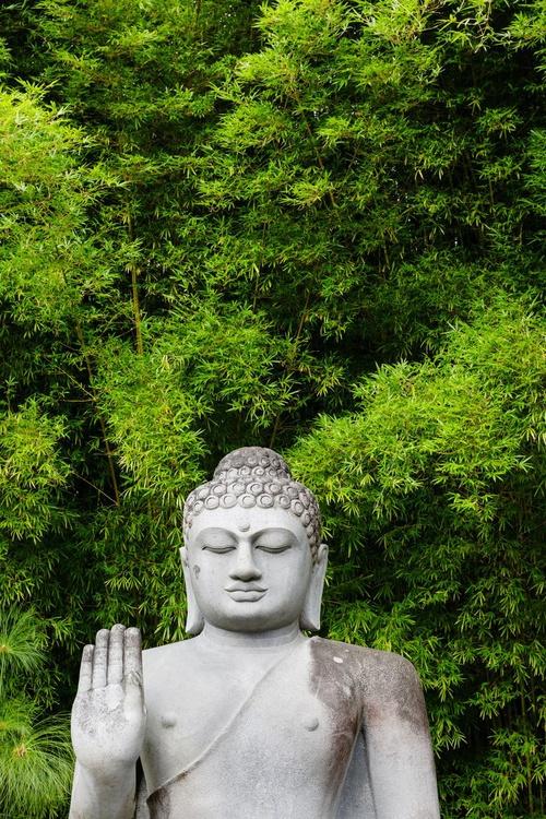 Buddha and Bamboo (136x203cm) - Image 0