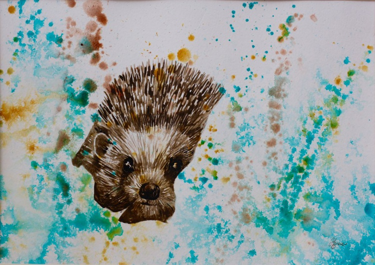 Hedgehog - Image 0