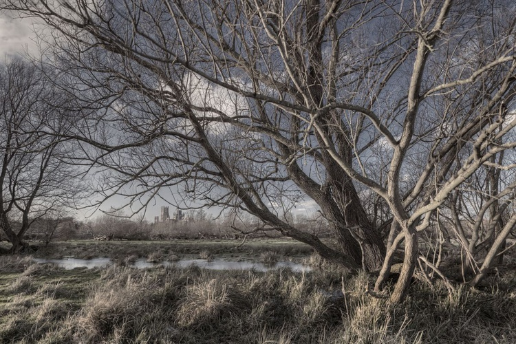 Ely Cathedral from the Marshes - Image 0