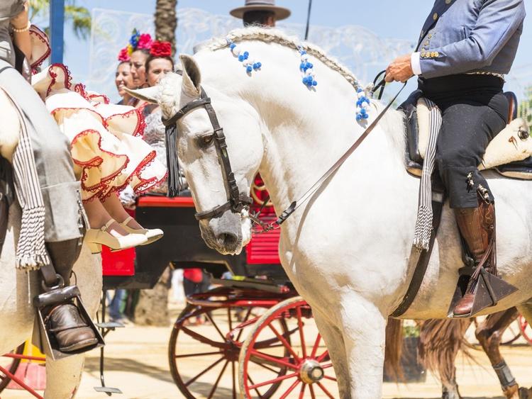 Jerez Horse festival 1. - Image 0