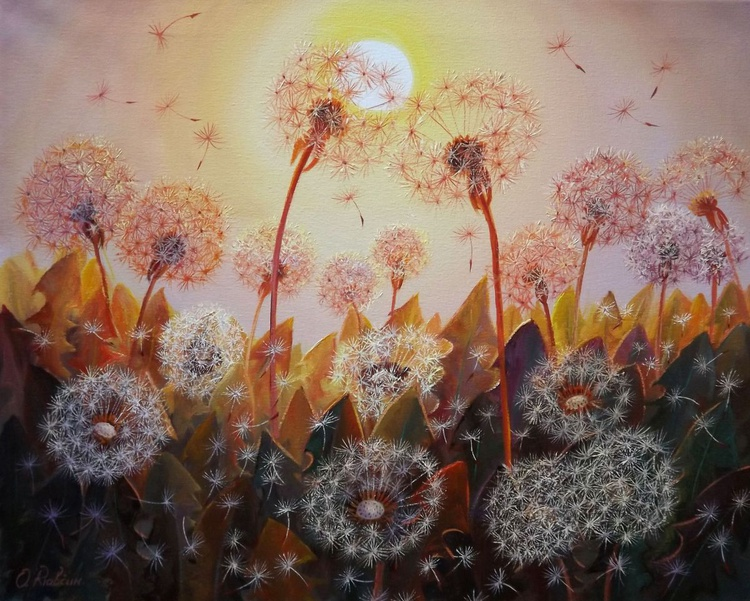 Dandelions in the Sun - Image 0