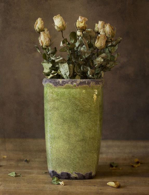 Roses Still Life (edition of 30) - Image 0