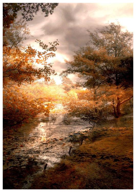 Autumn Light - Image 0