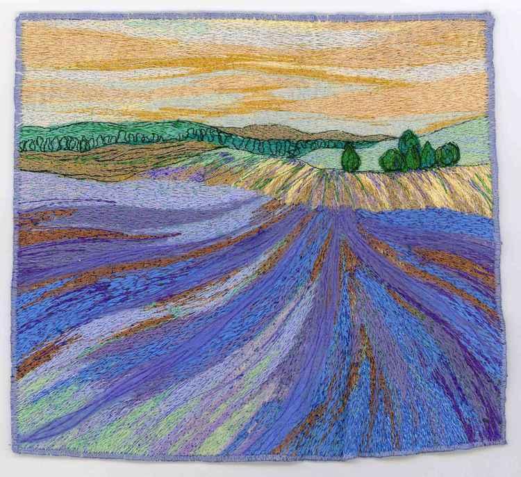 Sea of Lavender