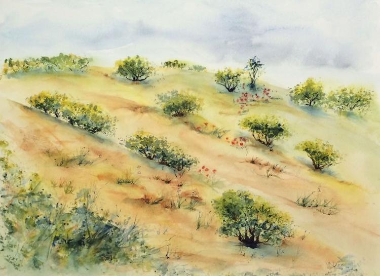 Olive Trees on an Umbrian Hillside - Image 0