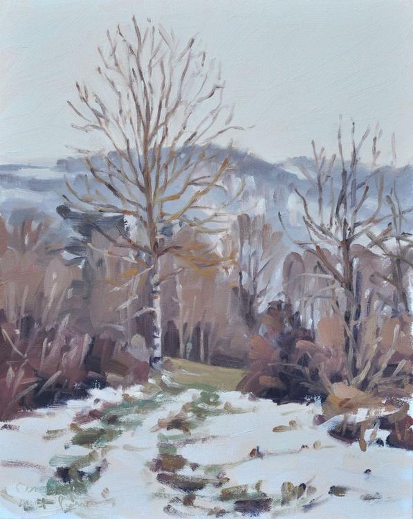 February 9, Vorey, lane through the melting snow - Image 0