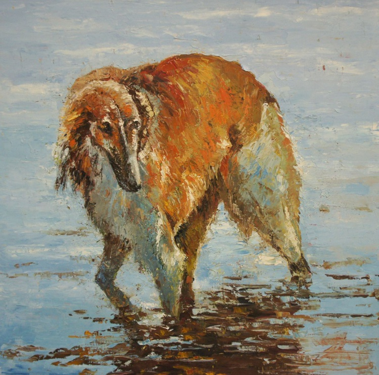 Dog in the Water - Image 0