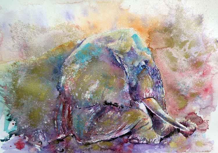 Old elephant -