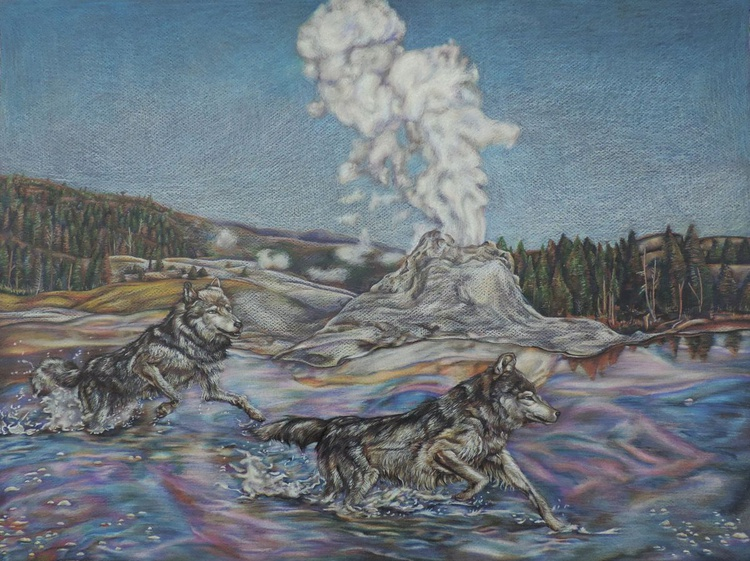 Wolves near Castle Geyser, Yellowstone - Image 0