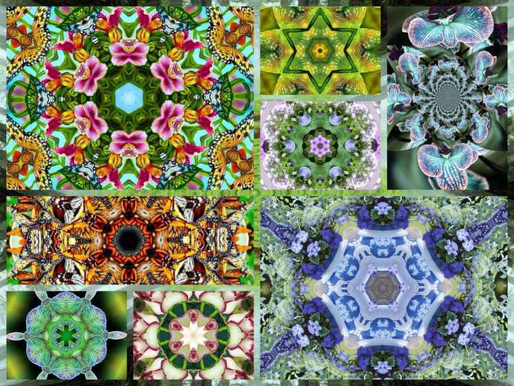 Mandala collage x8 4 -
