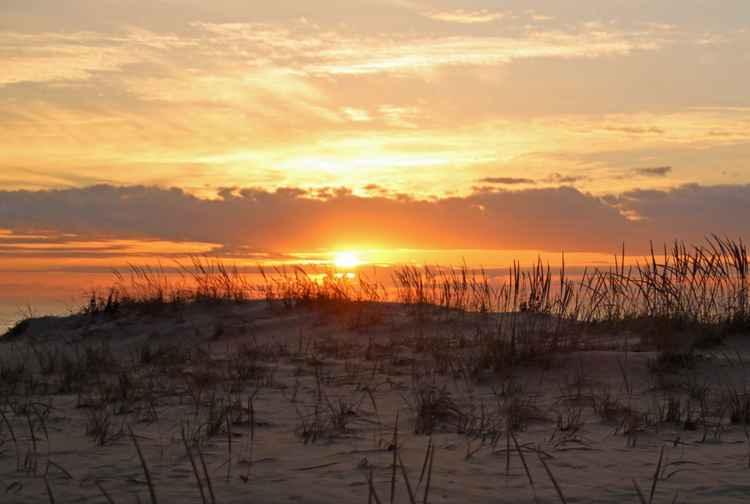 Morning Sun over the Sand Dunes -