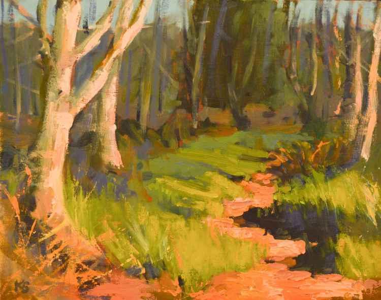 Woodland Path -