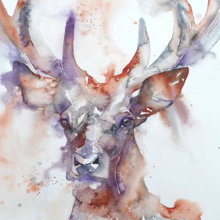 Stag at dusk - Image 0