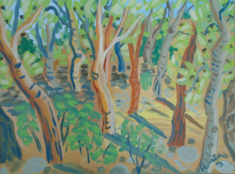 Pine Tree Woodland - Image 0