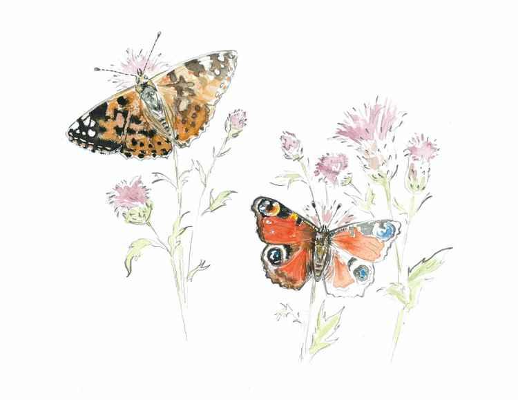 Butterflies fading
