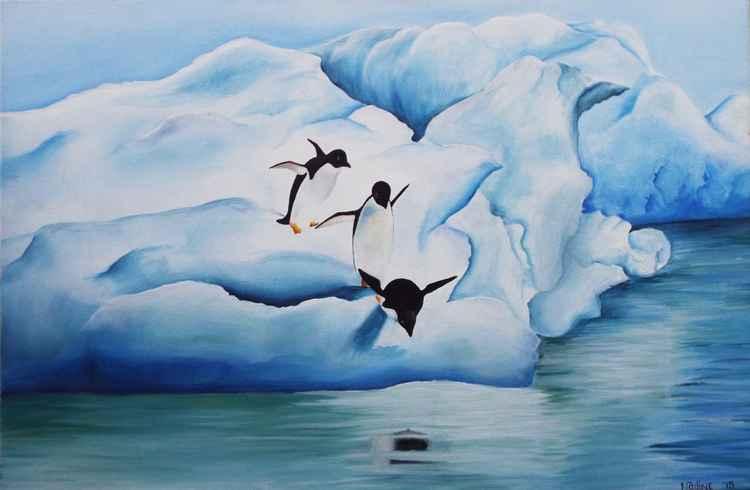 Adélie Penguins -