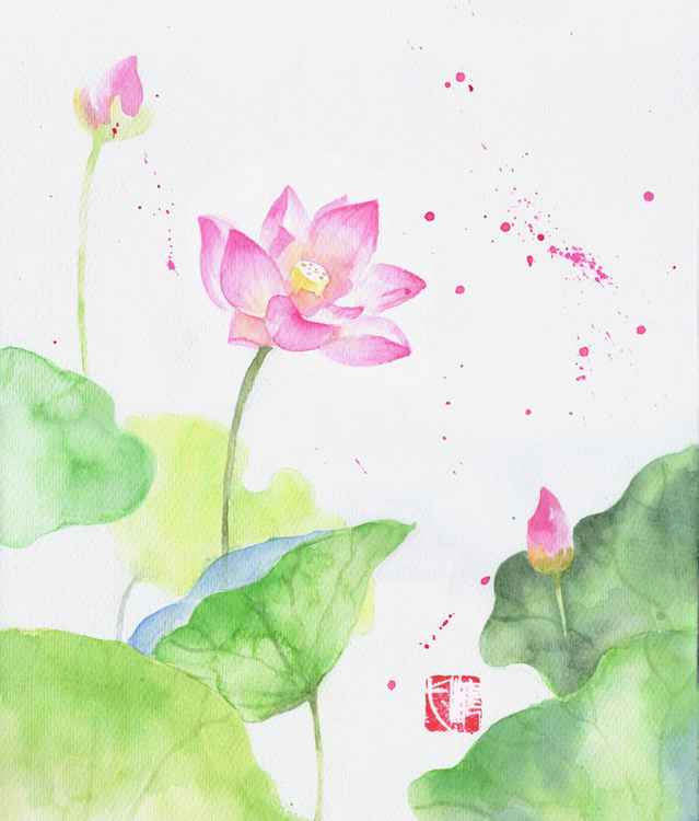 pink lotus watercolor -