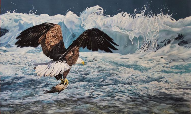 Pacific Rim Bald Eagle - Image 0