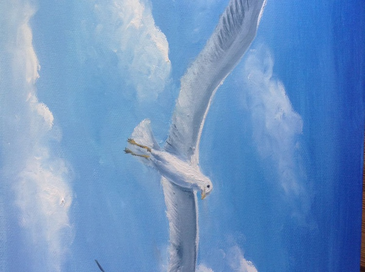 The seagull. The feeling of flying - Image 0