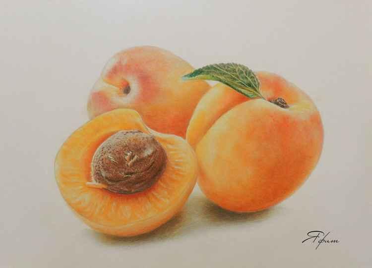 Apricot trio -